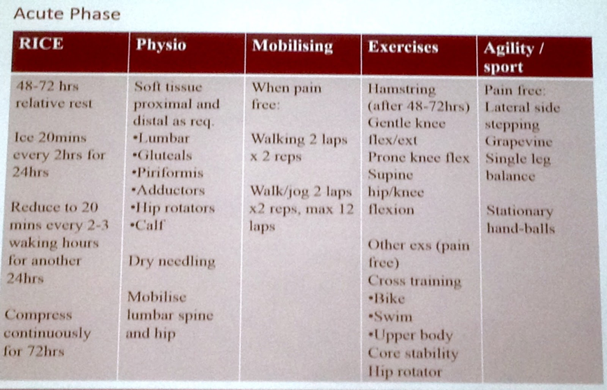 hamstring rehabilitation program